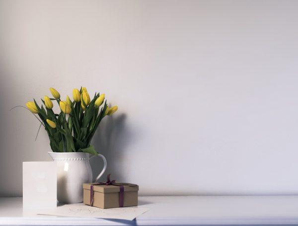 box-white-background